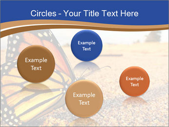 0000079515 PowerPoint Templates - Slide 77