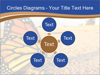 0000079515 PowerPoint Templates - Slide 78