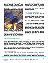 0000079523 Word Template - Page 4