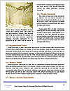 0000079527 Word Template - Page 4