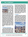 0000079530 Word Template - Page 3