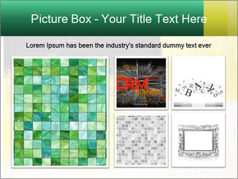 0000079535 PowerPoint Templates - Slide 19