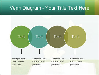 0000079536 PowerPoint Templates - Slide 32