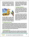 0000079536 Word Templates - Page 4
