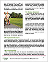 0000079538 Word Template - Page 4