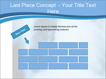 0000079540 PowerPoint Templates - Slide 46