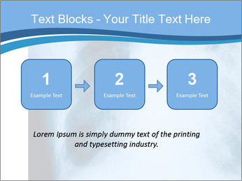 0000079540 PowerPoint Templates - Slide 71