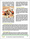 0000079544 Word Template - Page 4