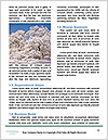 0000079545 Word Templates - Page 4