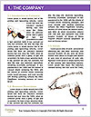 0000079546 Word Templates - Page 3