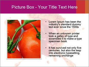 0000079551 PowerPoint Templates - Slide 13