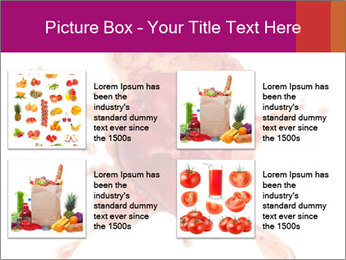 0000079551 PowerPoint Templates - Slide 14