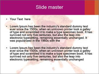 0000079551 PowerPoint Templates - Slide 2