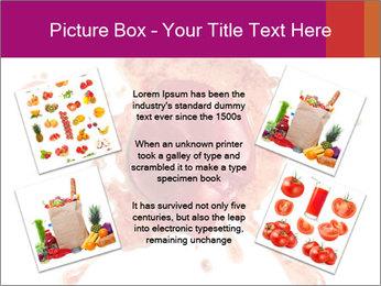 0000079551 PowerPoint Templates - Slide 24