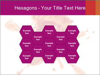 0000079551 PowerPoint Templates - Slide 44