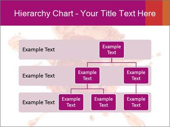 0000079551 PowerPoint Templates - Slide 67