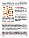 0000079551 Word Template - Page 4