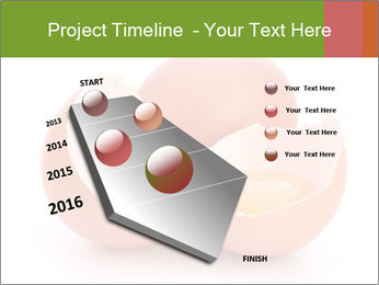 0000079553 PowerPoint Template - Slide 26