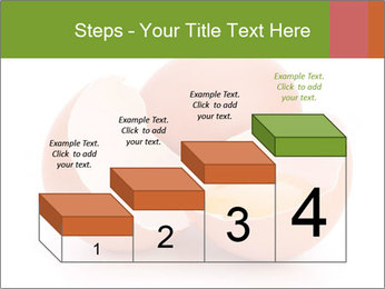 0000079553 PowerPoint Template - Slide 64