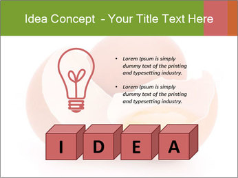 0000079553 PowerPoint Template - Slide 80