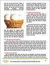 0000079553 Word Template - Page 4
