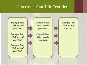 0000079554 PowerPoint Template - Slide 86