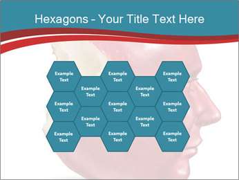0000079560 PowerPoint Templates - Slide 44