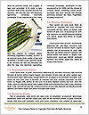 0000079562 Word Template - Page 4