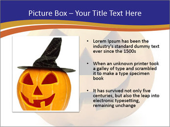 0000079563 PowerPoint Templates - Slide 13