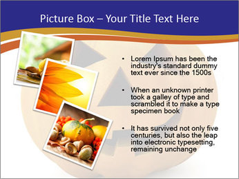 0000079563 PowerPoint Templates - Slide 17