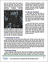 0000079564 Word Template - Page 4
