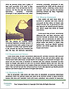 0000079566 Word Template - Page 4