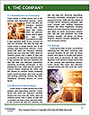 0000079570 Word Template - Page 3