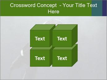 0000079574 PowerPoint Templates - Slide 39