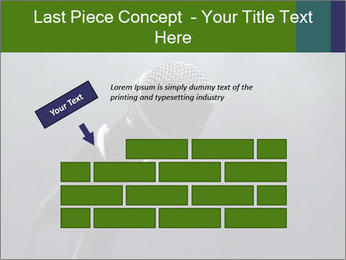 0000079574 PowerPoint Templates - Slide 46