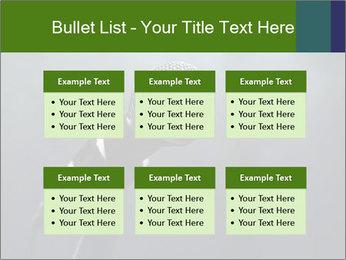 0000079574 PowerPoint Templates - Slide 56