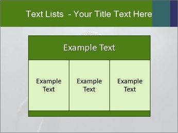 0000079574 PowerPoint Templates - Slide 59
