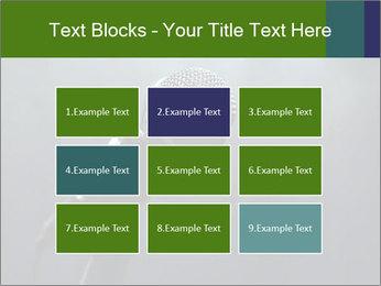 0000079574 PowerPoint Templates - Slide 68
