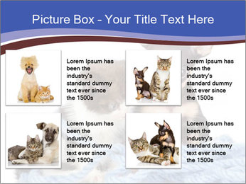 0000079582 PowerPoint Templates - Slide 14
