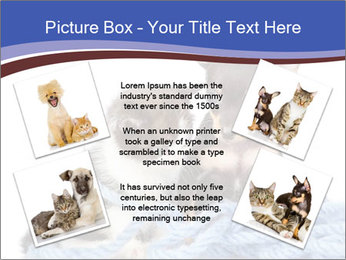 0000079582 PowerPoint Templates - Slide 24