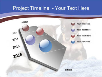 0000079582 PowerPoint Templates - Slide 26