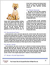 0000079582 Word Template - Page 4