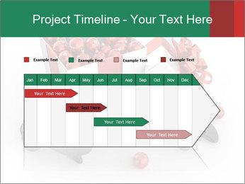 0000079584 PowerPoint Template - Slide 25
