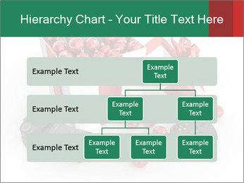 0000079584 PowerPoint Template - Slide 67