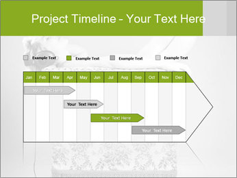 0000079585 PowerPoint Template - Slide 25
