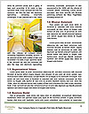 0000079592 Word Templates - Page 4