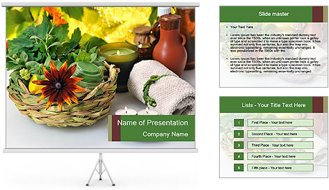 0000079593 PowerPoint Template