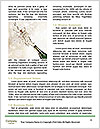 0000079594 Word Templates - Page 4