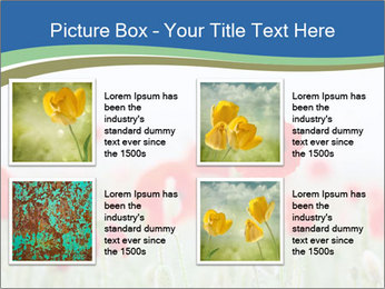0000079595 PowerPoint Template - Slide 14