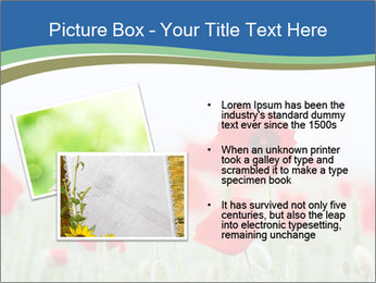 0000079595 PowerPoint Template - Slide 20